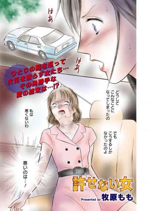 本当にあった主婦の黒い話vol.8〜許せない女〜