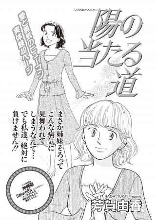 女のブラック履歴書 vol.3〜陽の当たる道〜